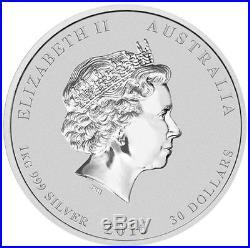 1kg Solid Silver Lunar Series, Monkey. 999 Coin