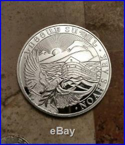 9 troy ounces of solid silver