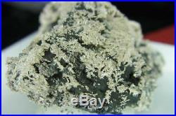 Solid Silver/Dendrites on Arsenic Pöhla / Erzgebirge Nugget/Specimen Ged. S26